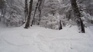 Baraloche, Argentina snow