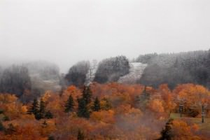 SugarBush Snoliage 10/8/2012