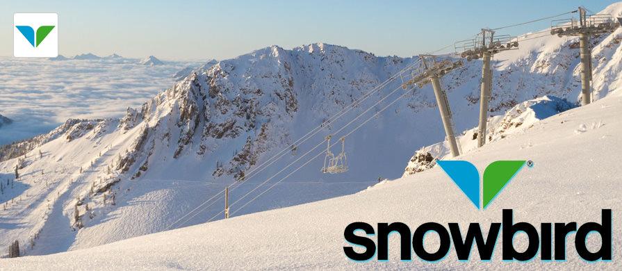 snowbird-slide