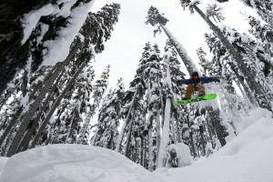 Whistler Blackcomb in Pictures