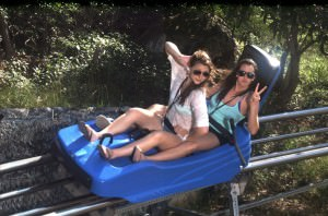 Mountain-Coaster